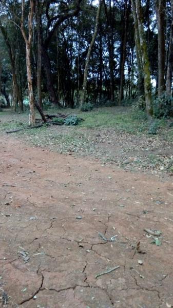Terreno para Venda em Araucária / PR no bairro Bairro Estado